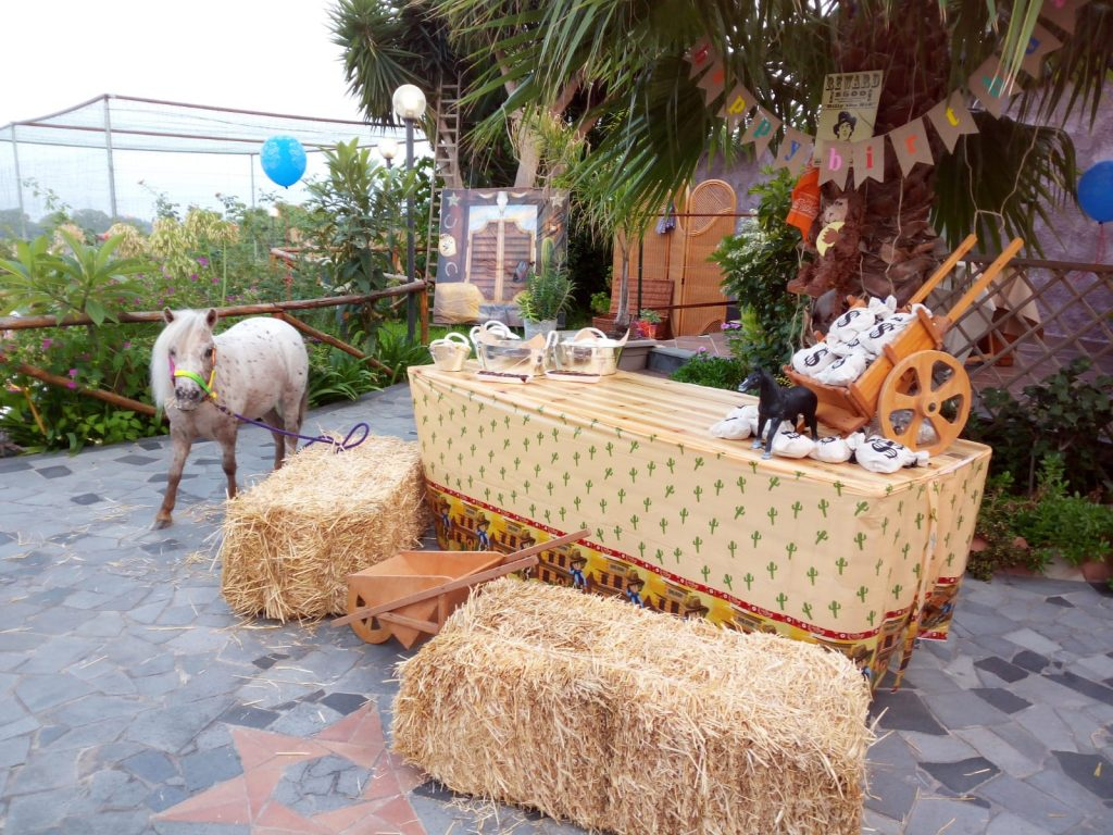 festa-cavallo-asino-acireale-catania